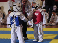 Taekwondo – Under 18
